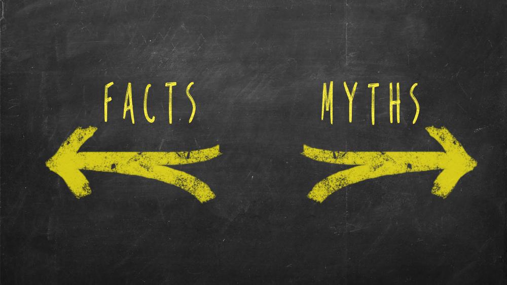 Comment révéler les mensonges dans un CV ?